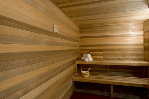 Sauna therapy complexions spa for beauty wellness sauna therapy altavistaventures Images